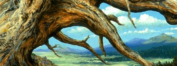 fantasy_tree